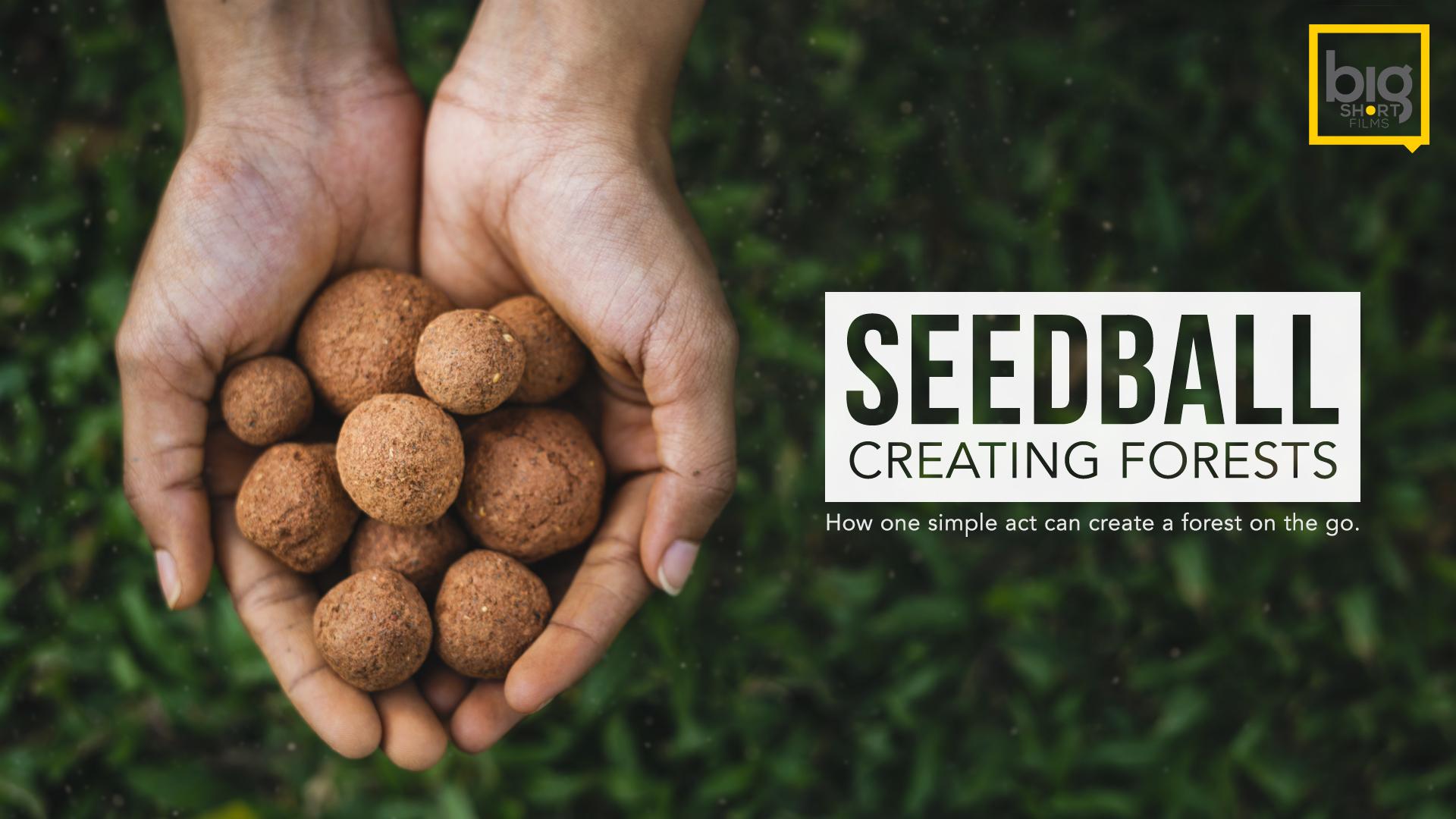 Seedball-Poster